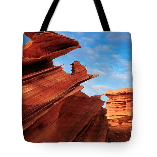 Altar Of Sacrifice Tote Bag by Inge Johnsson
