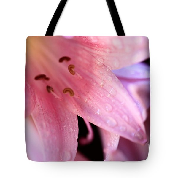 Amaryllis Tote Bag by Cheryl Young