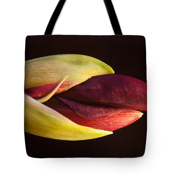 Amaryllis Opening Tote Bag by Frank Tozier