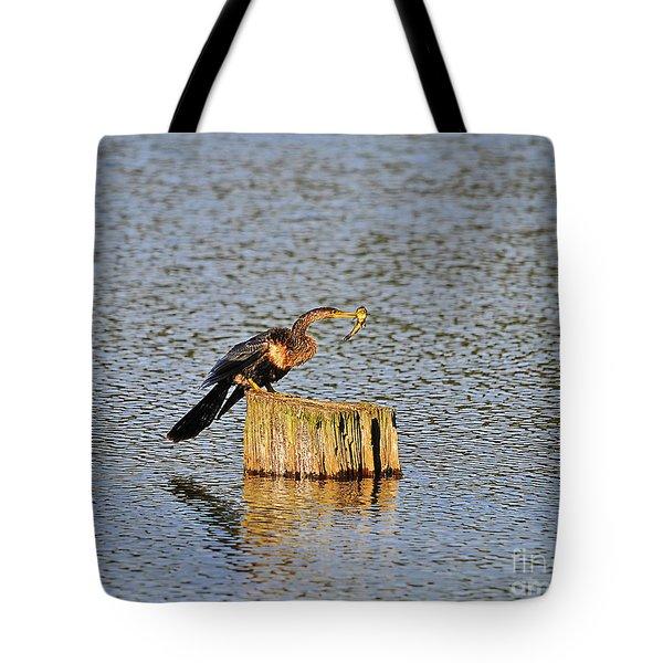 American Anhinga Angler Tote Bag by Al Powell Photography USA