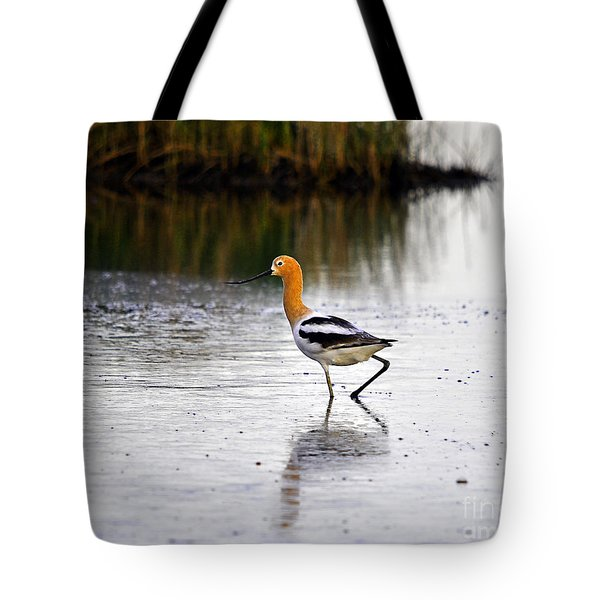 American Avocet Tote Bag by Al Powell Photography USA