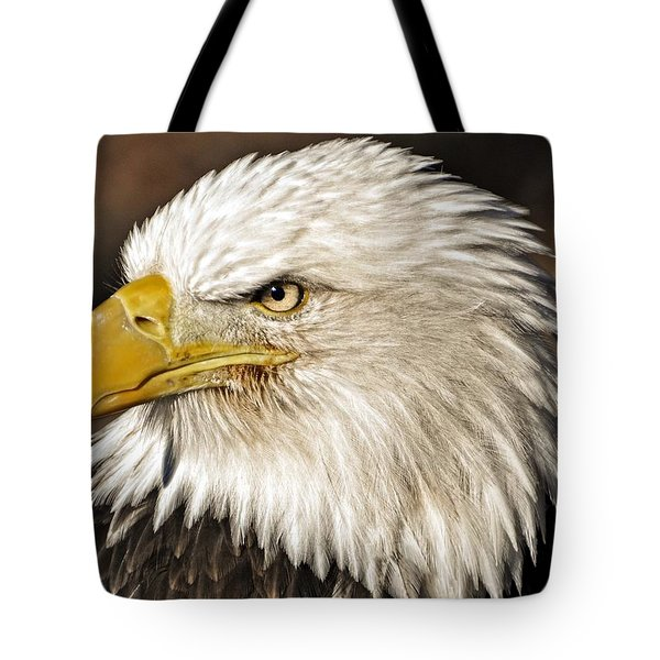 American Bald Eagle 33 Tote Bag by Marty Koch