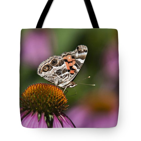 American Painted Lady Butterfly Tote Bag by Christina Rollo