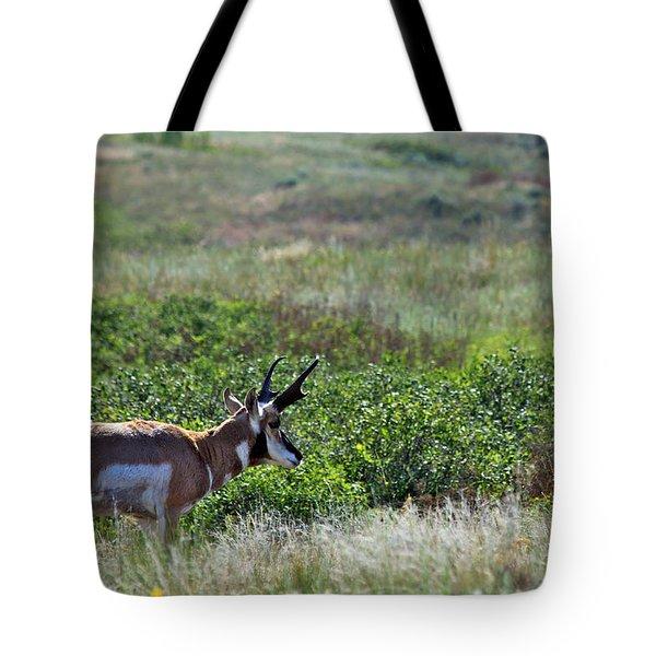 American Pronghorn Buck Tote Bag by Karon Melillo DeVega