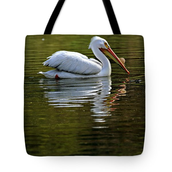 American White Pelican Tote Bag by Elizabeth Winter
