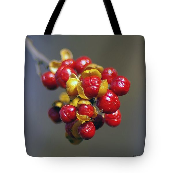 American Winterberry Tote Bag by Brian Wallace