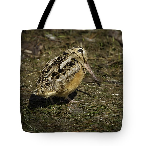 American Woodcock 2 Tote Bag by Thomas Young