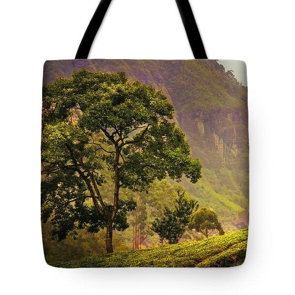 Among the Mountains and Tea Plantations. Nuwara Eliya. Sri Lanka Tote Bag by Jenny Rainbow
