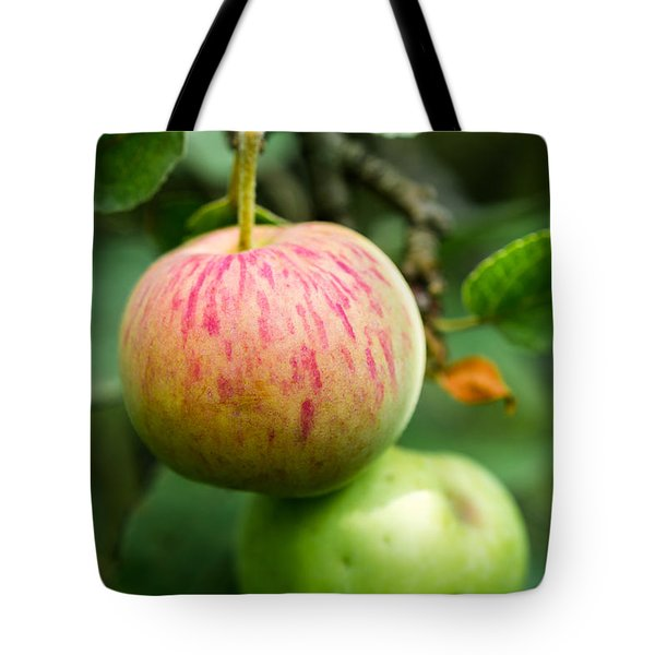 An Apple - Featured 3 Tote Bag by Alexander Senin