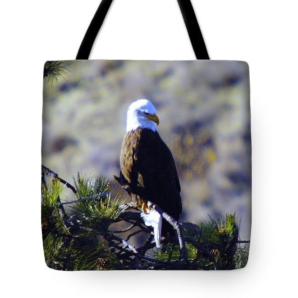 An Eagle In The Sun Tote Bag by Jeff Swan