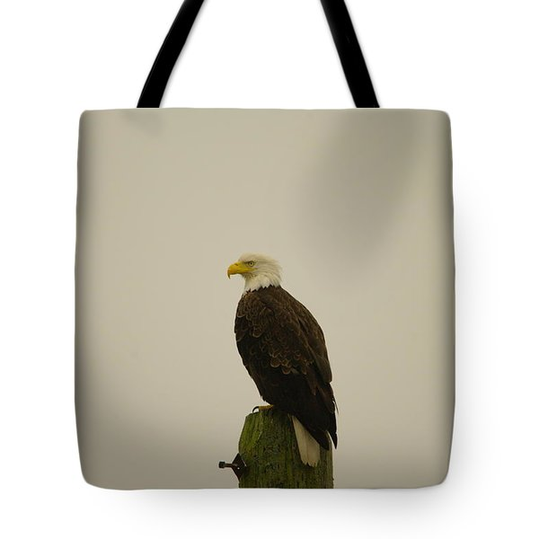 An Eagle Perched Tote Bag by Jeff Swan
