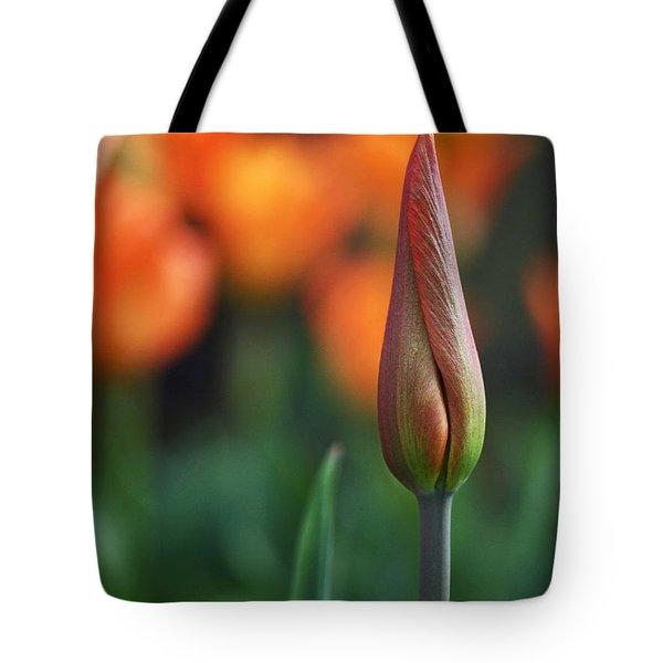 An Elegant Beginning Tote Bag by Rona Black