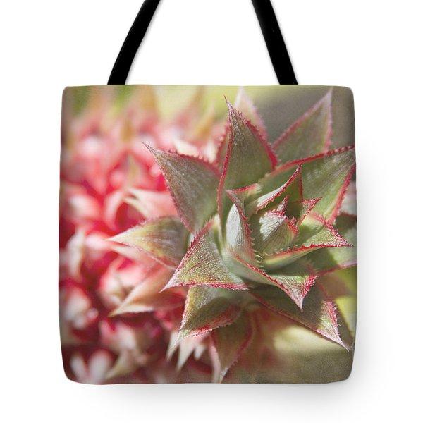Ananas Comosus - Pink Ornamental Pineapple Tote Bag by Sharon Mau