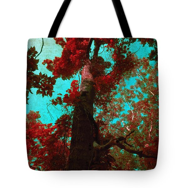 Ancient One Tote Bag by Shawna  Rowe