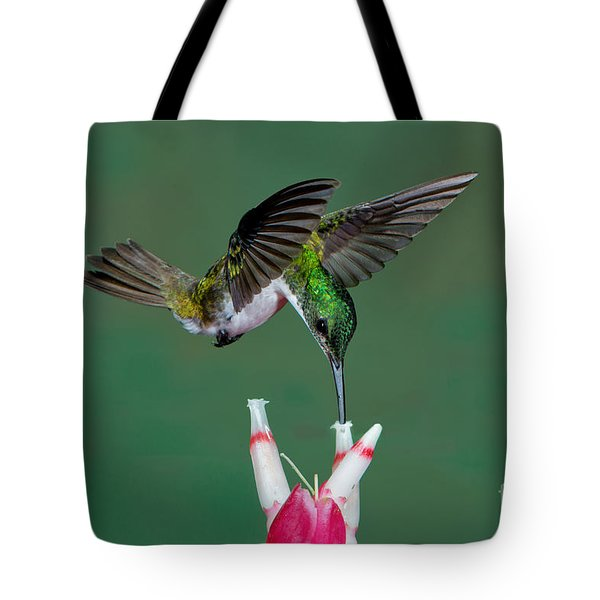 Andean Emerald Hummingbird Tote Bag by Anthony Mercieca