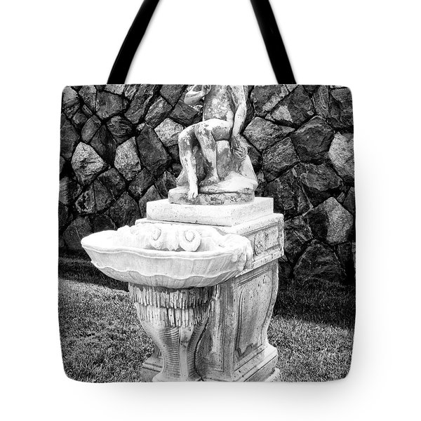 ANGEL SANCTUARY Biltmore Asheville NC Tote Bag by William Dey
