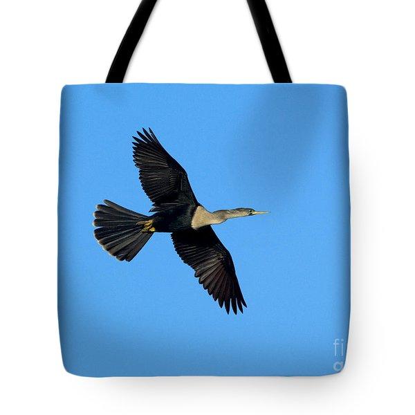 Anhinga Female Flying Tote Bag by Anthony Mercieca