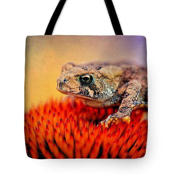 Another Fine Mess Tote Bag by Lois Bryan