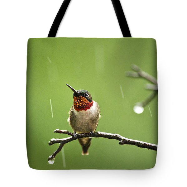 Another Rainy Day Hummingbird Tote Bag by Christina Rollo