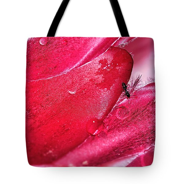 Ant Exploring Protea Petals Tote Bag by Kaye Menner
