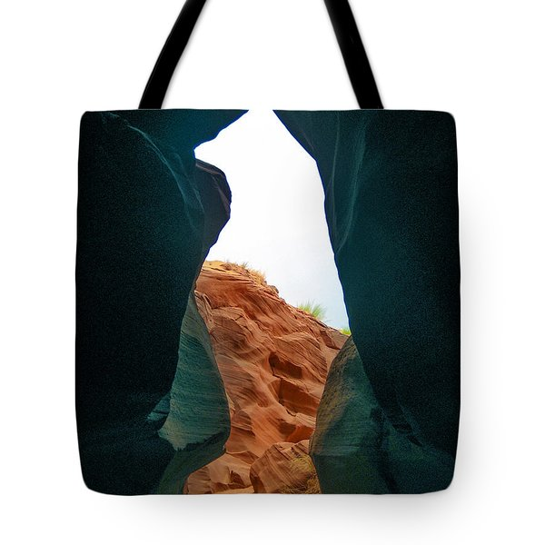 Antelope Canyon Bear Tote Bag by Dany Lison