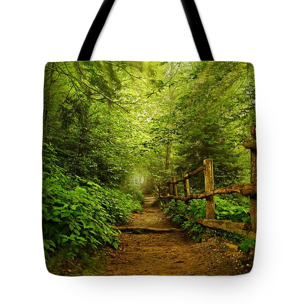 Appalachian Trail At Newfound Gap Tote Bag by Stephen Stookey