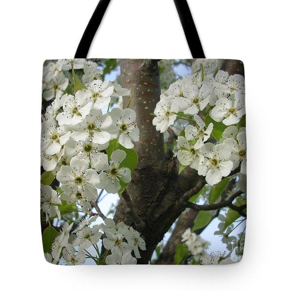 Apple Blossoms Tote Bag by Randi Shenkman