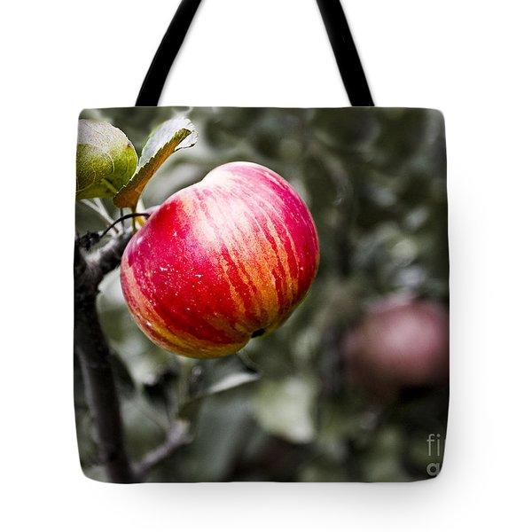 Apple Tote Bag by Steven Ralser