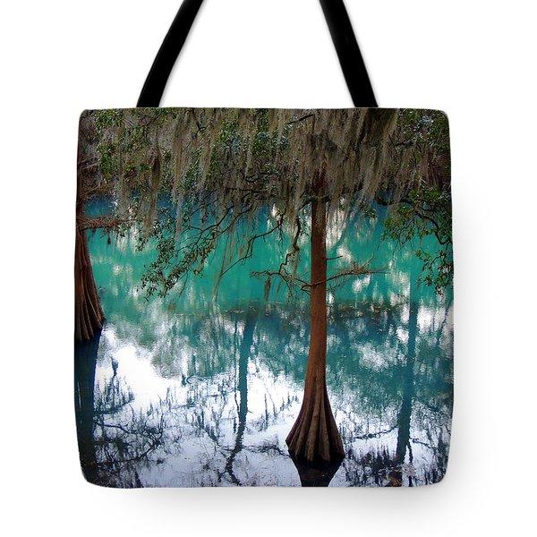 Aqua Beauty Tote Bag by Kim Pate