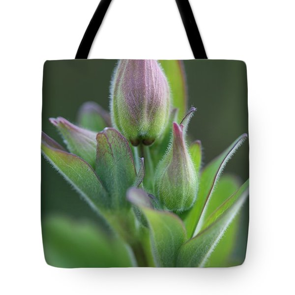 Aquilegia In Bud Tote Bag by Mark Severn