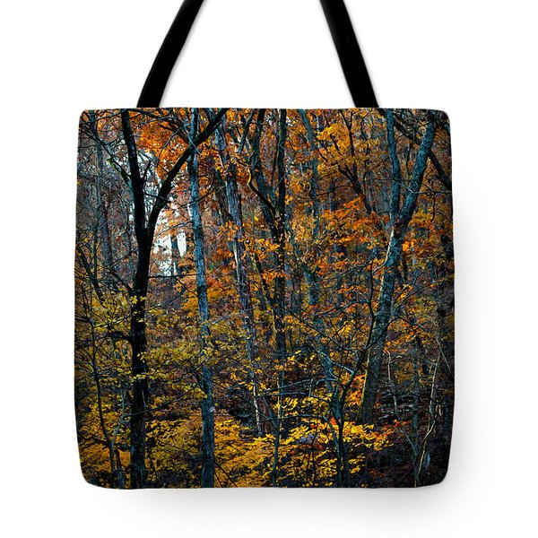 AR Fall 12-005FP Tote Bag by Scott McAllister