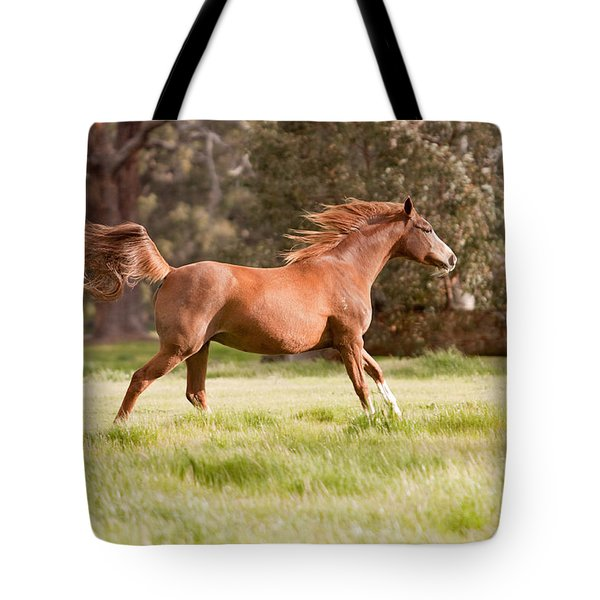 Arabian Horse Running Free Tote Bag by Michelle Wrighton