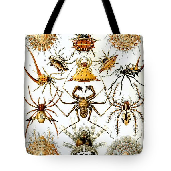Arachnida Tote Bag by Nomad Art And  Design