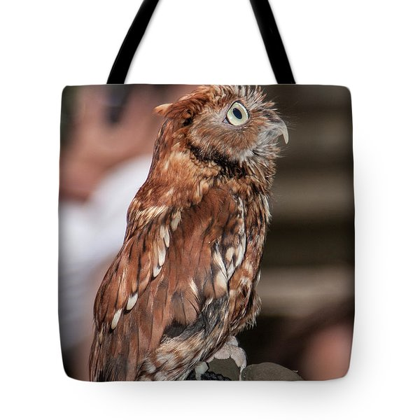 Are You My Mother Tote Bag by John Haldane