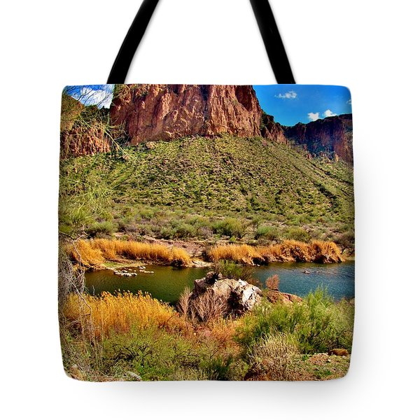 Arizona At Its' Best Tote Bag by Marilyn Smith