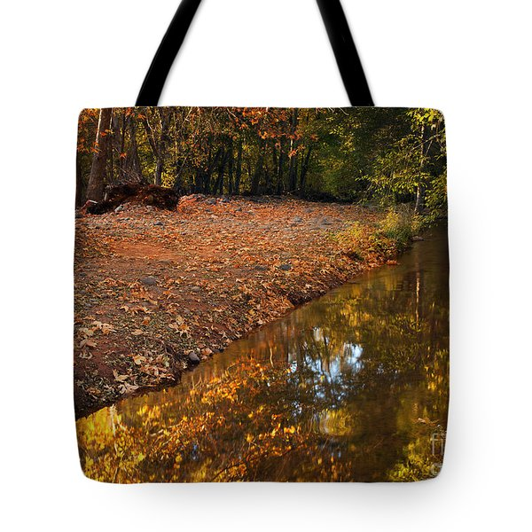 Arizona Autumn Reflections Tote Bag by Mike  Dawson