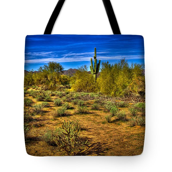 Arizona Landscape Iv Tote Bag by David Patterson