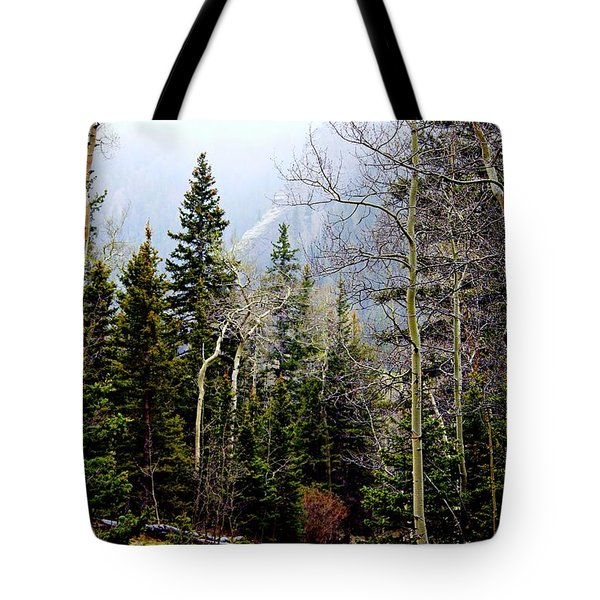 Around The Bend Tote Bag by Barbara Chichester