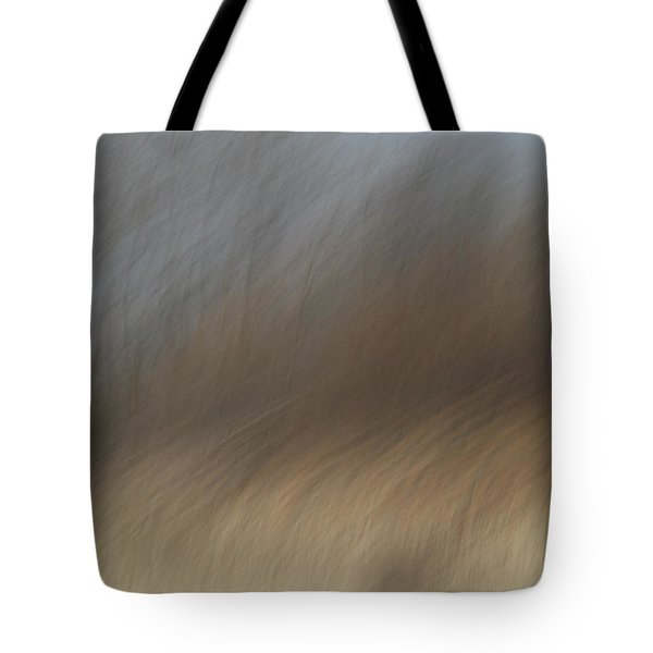 As The Wind Blows Tote Bag by Karol  Livote