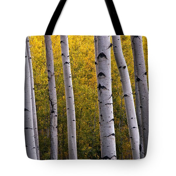 Aspen Light 2 Tote Bag by Dave Dilli