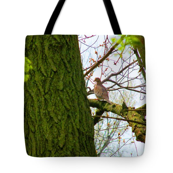 Assessing The View Tote Bag by Tina M Wenger