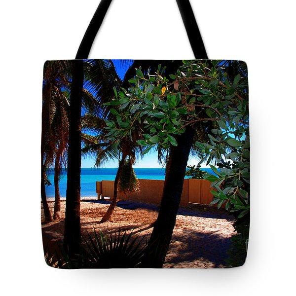 At Dog's Beach In Key West Tote Bag by Susanne Van Hulst