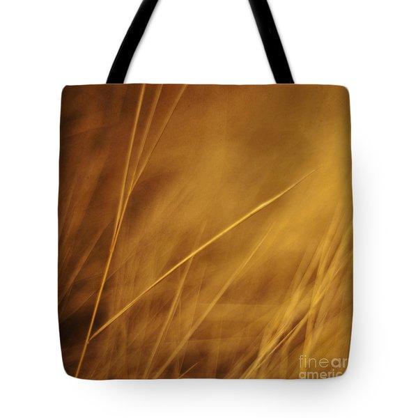 aurum Tote Bag by Priska Wettstein