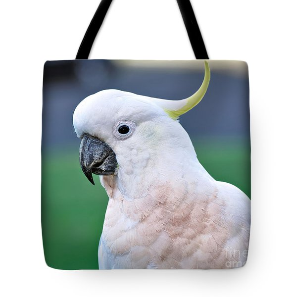 Australian Birds - Cockatoo Tote Bag by Kaye Menner