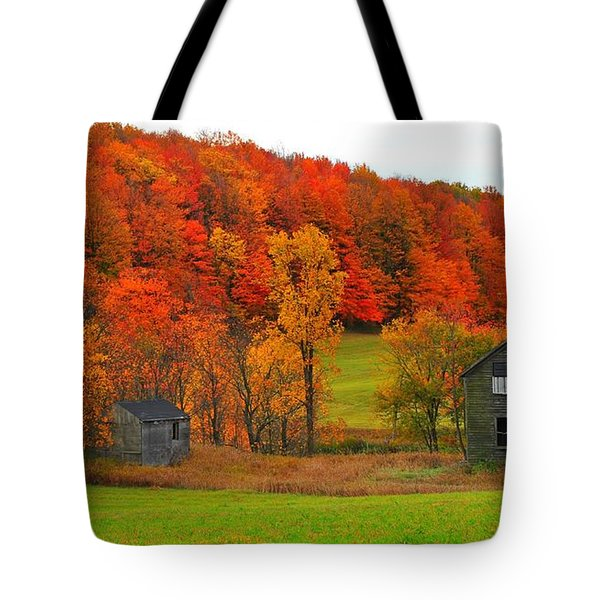 Autumn Abandoned Tote Bag by Terri Gostola