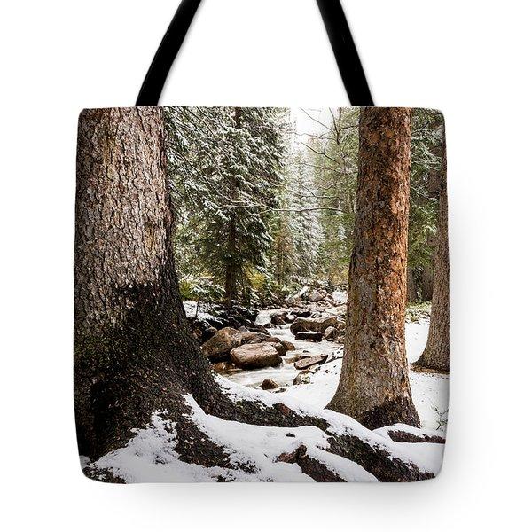Autumn At Gore Creek 5 - Vail Colorado Tote Bag by Brian Harig
