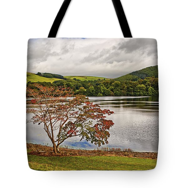 Autumn Beauty Tote Bag by Marcia Colelli