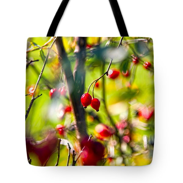 Autumn Berries  Tote Bag by Stylianos Kleanthous
