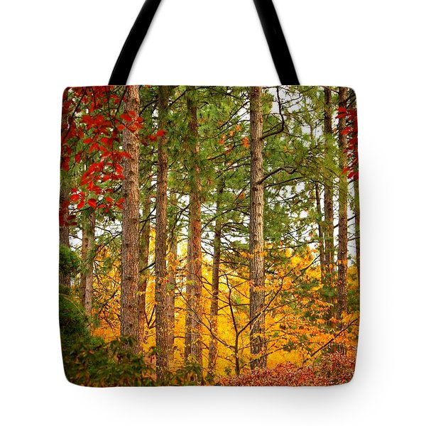 Autumn Canvas Tote Bag by Carol Groenen