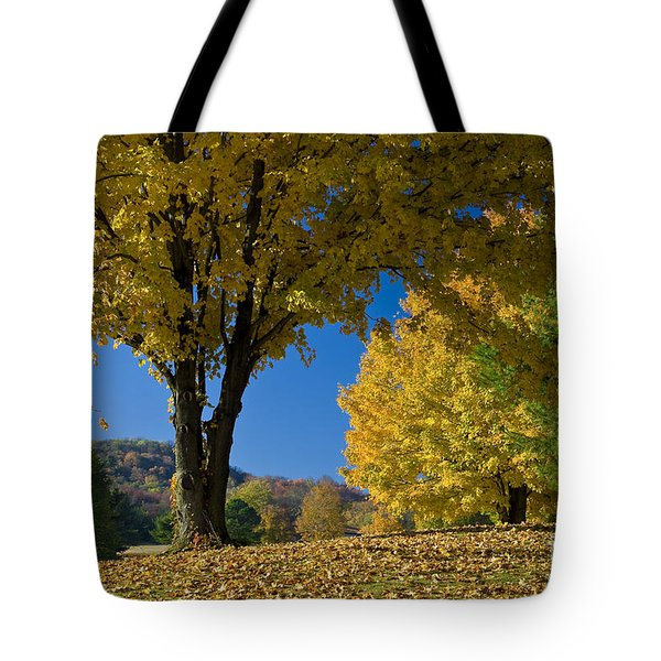 Autumn Colors Tote Bag by Brian Jannsen